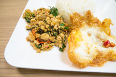 Carne di maiale e basilico in padella tailandese ed uovo fritto fotografia stock libera da diritti