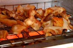 Carne di maiale nel forno Fotografie Stock