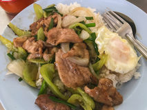 Carne di maiale in padella con peperone dolce con l'uovo fritto Fotografia Stock Libera da Diritti