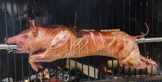 Carne di maiale/prosciutto della griglia Fotografia Stock Libera da Diritti