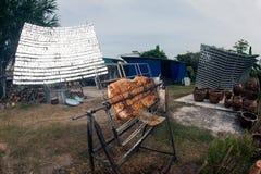 Carne di maiale Solare-arrostita col barbecue da un vetro Fotografia Stock Libera da Diritti