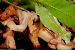 Carne di maiale succosa del BBQ con le foglie di Kosambi fotografie stock