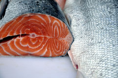 Carne di pesci Immagine Stock