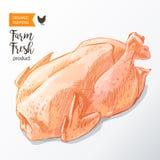 Carne di pollo Fotografie Stock