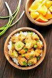 Carne di pollo asiatica del piatto con salsa arancio Fotografia Stock Libera da Diritti