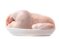 Carne di una gallina. fotografia stock