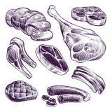 Carne dibujada mano Filete, carne de vaca y cerdo, carne de la parrilla del cordero y ejemplo del vector del bosquejo del vintage ilustración del vector