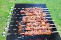 Carne do assado em skewers imagens de stock