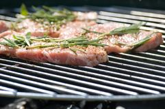Carne do BBQ Fotografia de Stock