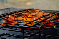 Carne do BBQ Foto de Stock Royalty Free