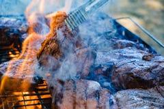 Carne do BBQ da grade da natureza do verão, carvões da carne de porco imagens de stock royalty free