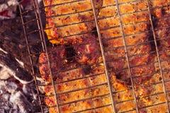 Carne do BBQ da grade da natureza do verão, carvões do gramado foto de stock
