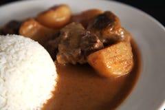 Carne do caril com arroz foto de stock royalty free