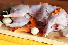 Carne do coelho com vegetais Fotografia de Stock Royalty Free