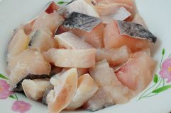 A carne dos peixes Fotografia de Stock