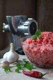 Carne e carne tritata con le erbe Fotografia Stock Libera da Diritti