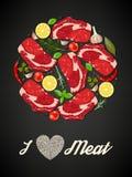 Carne e especiarias Fotografia de Stock Royalty Free