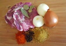 Carne e especiarias Imagens de Stock