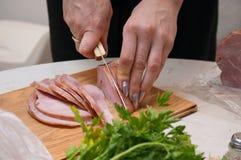 Carne e salsa Fotografia de Stock Royalty Free