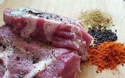 Carne e spezie Fotografia Stock