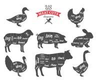 A carne (E.U.) americana corta diagramas ilustração stock