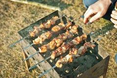 Carne em espetos Imagens de Stock