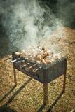 Carne em espetos Fotos de Stock
