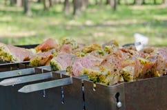 Carne em espetos Imagem de Stock Royalty Free