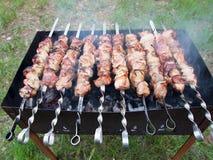 A carne em espetos cozinhou na grade sobre os carvões foto de stock royalty free
