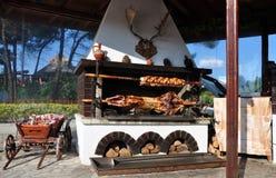 Carne em um skewer. imagem de stock