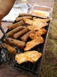 Carne en comida campestre Imagen de archivo libre de regalías