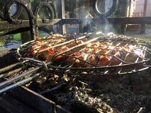 Carne en el fuego en el bosque fotografía de archivo