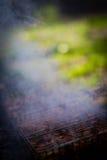 Carne en la parrilla, con humo en un fondo de la hierba verde Fotografía de archivo