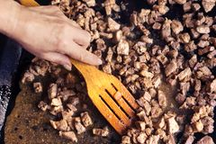 Carne en un molde para el horno Imagen de archivo