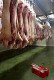 Carne fresca 2 Imagem de Stock Royalty Free