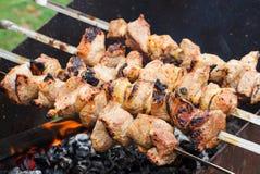 Carne fresca asada a la parrilla en los pinchos hasta marrón de oro Imagenes de archivo