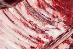 Carne fresca di carne di maiale Fotografia Stock