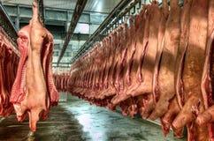 Carne fresca em uma fábrica do corte frio foto de stock royalty free