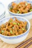 Carne friável chinesa Imagens de Stock