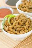 Carne friável chinesa Fotografia de Stock