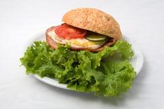 Carne fritada friável foto de stock royalty free
