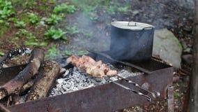 Carne fritada suculenta deliciosa no espeto, apenas cozinhado em uma grade em um conceito dos povos e dos feriados do fundo do po video estoque