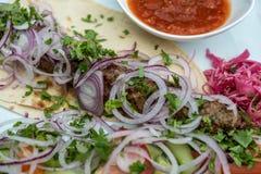 Carne fritta con le cipolle fresche su un piatto, kebab di lula dall'agnello immagini stock libere da diritti