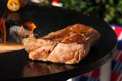 Carne grelhada deliciosa com o vegetal sobre os carvões em um assado foto de stock