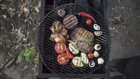 Carne grelhada deliciosa sortido com o vegetal sobre os carvões em um assado foto de stock royalty free