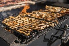 Carne grelhada deliciosa sortido sobre os carvões no assado imagem de stock