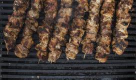 Carne grelhada deliciosa sortido sobre os carvões no assado foto de stock royalty free