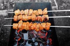 Carne grelhada em espetos sobre o fogo imagens de stock royalty free