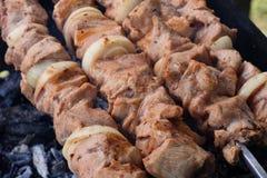 Carne grelhada na grade na natureza, em carvões quentes, fumo imagem de stock royalty free