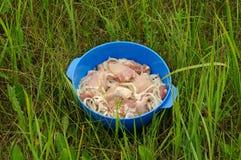 Carne marinata per il barbecue all'aperto Fotografie Stock